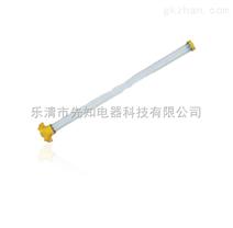 BYC8310/HX防爆荧光灯