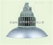 BAD84 ,防爆免维护节能LED灯,(II C)