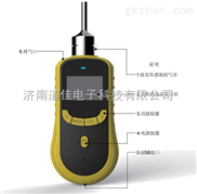 赣州DJY2000型臭氧检测仪,便携式臭氧泄漏检测仪