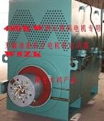 WSZK无刷液阻真空电机起动器