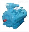 高压变频防爆电机-YBPT(355~560)