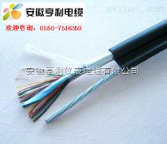 (商社电器)(ZR-DJVDPVDRP佛山计算机电缆)(电缆厚度)