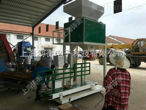 北京小麦包装机厂家