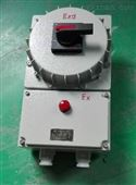 BDZ52-63防爆断路器/防尘防爆断路器箱