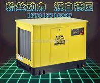 HS15REG15KW双燃料汽油发电机