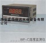数字式温度测量仪WP-C