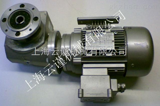 意大利RAEL MOTORI ELETTRICI铝制电机
