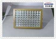 車間廠房加油站專用 礦用LED防爆燈