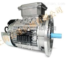 意大利 Neri Motori减速机单相电机 异步马达