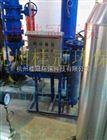 物化G型旁流水处理系统