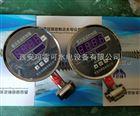 差压测控仪MDM484智能差压变送控制器麦克厂家