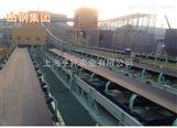 化肥厂原料运输计重皮带称