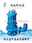 WQ污水潜水泵厂家