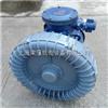 EX-G-1.5KW湖南工业设备输送臭氧防爆高压风机现货