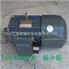 AEEF-20HP-8(15KW)中国台湾富田电机-富田三相异步电机